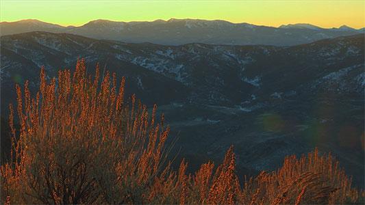 Reel_Utah